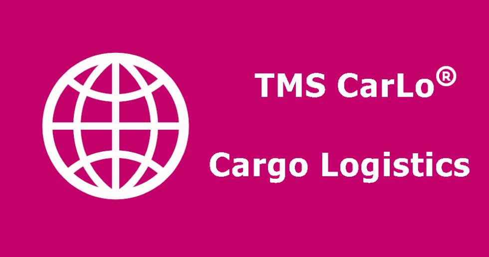 TMS CarLo – Planeamento de Transportes
